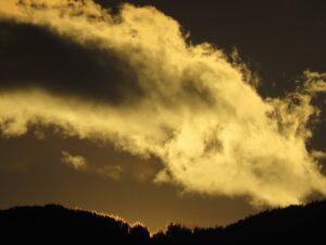 Feurige Baumspitzen Wolken Platz 1