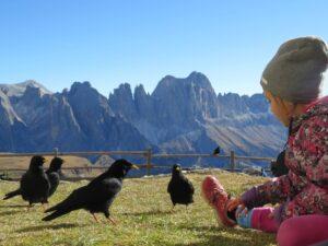Wanderungen Kinder Dolomiten Berge