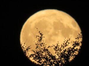 Mondaufgang Erster Platz Bestes Bild