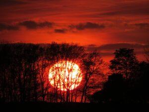 Natur Farbenstimmung Sonnenuntergang Wetter