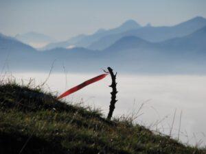 Gleitschirmwetter Windfahne Alpen