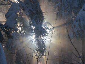 Waldwanderung Winterstimmung Berge